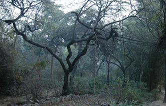 5 Most Haunted Places In Delhi You Can Visit 2