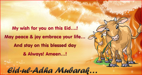 Eid ul Adha Mubarak Funny Wishes Greetings Messages Images Photos Pictures